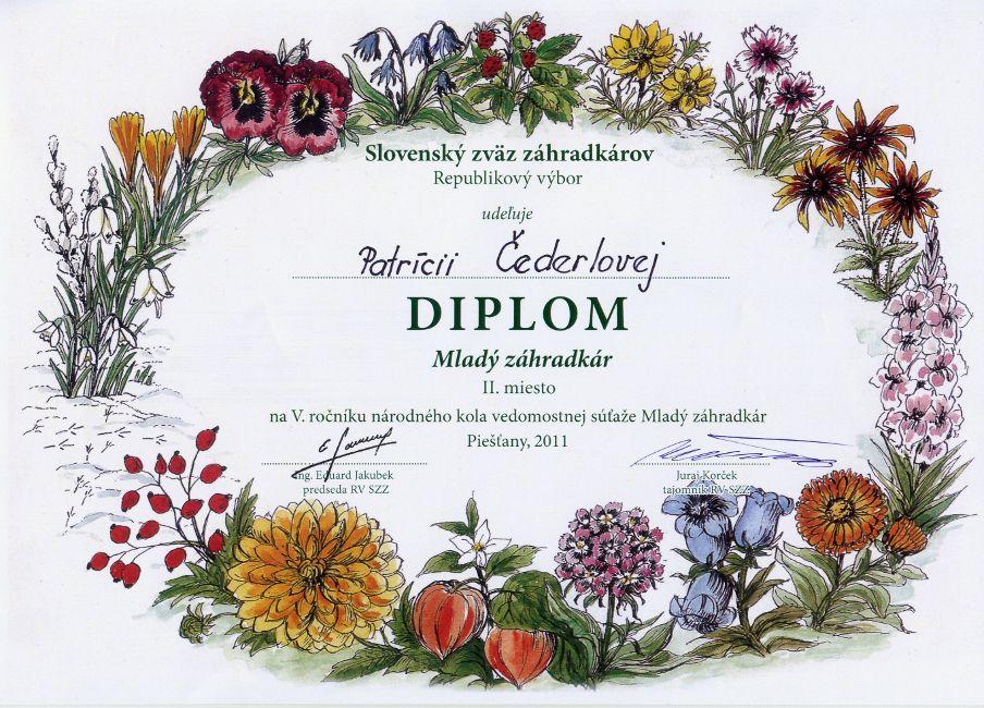diplom-111099-cederlova.jpg