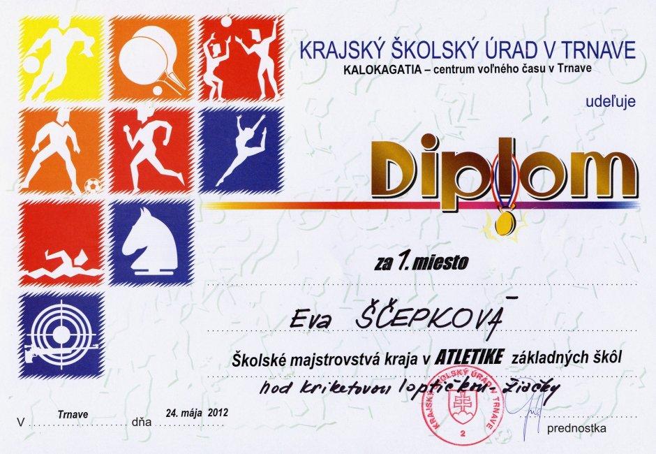 diplom-120524-scepkova-kriket.jpg