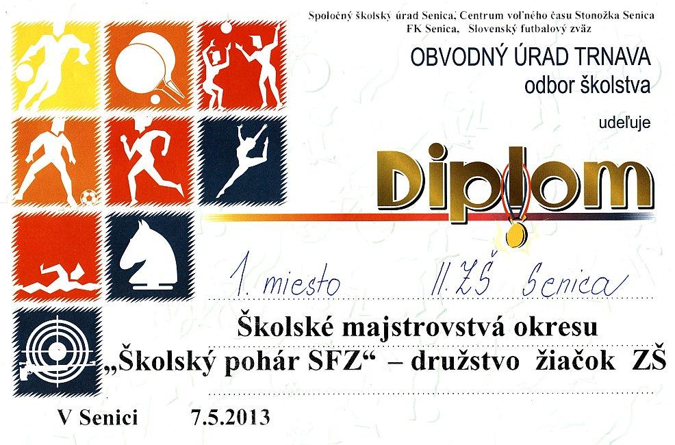 diplom-130507-sfz.jpg